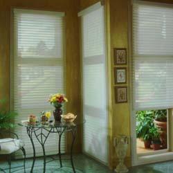 Treanna Window Covering